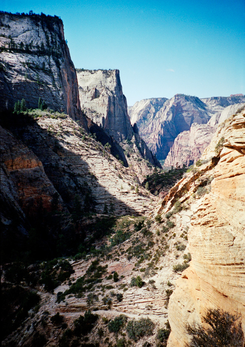view from Observation Point Zion Nation Park