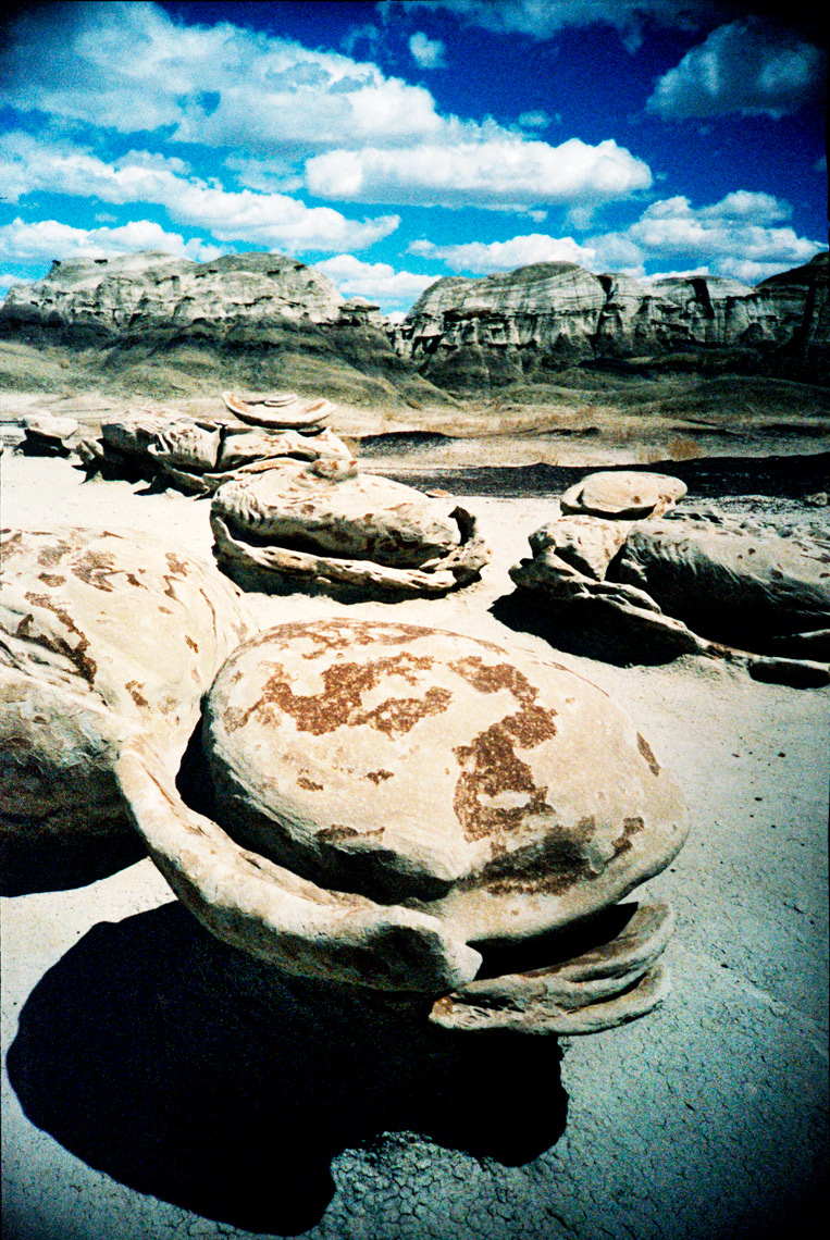 The Eggs in the De-Na-Zin Wilderness  Bisti Badlands
