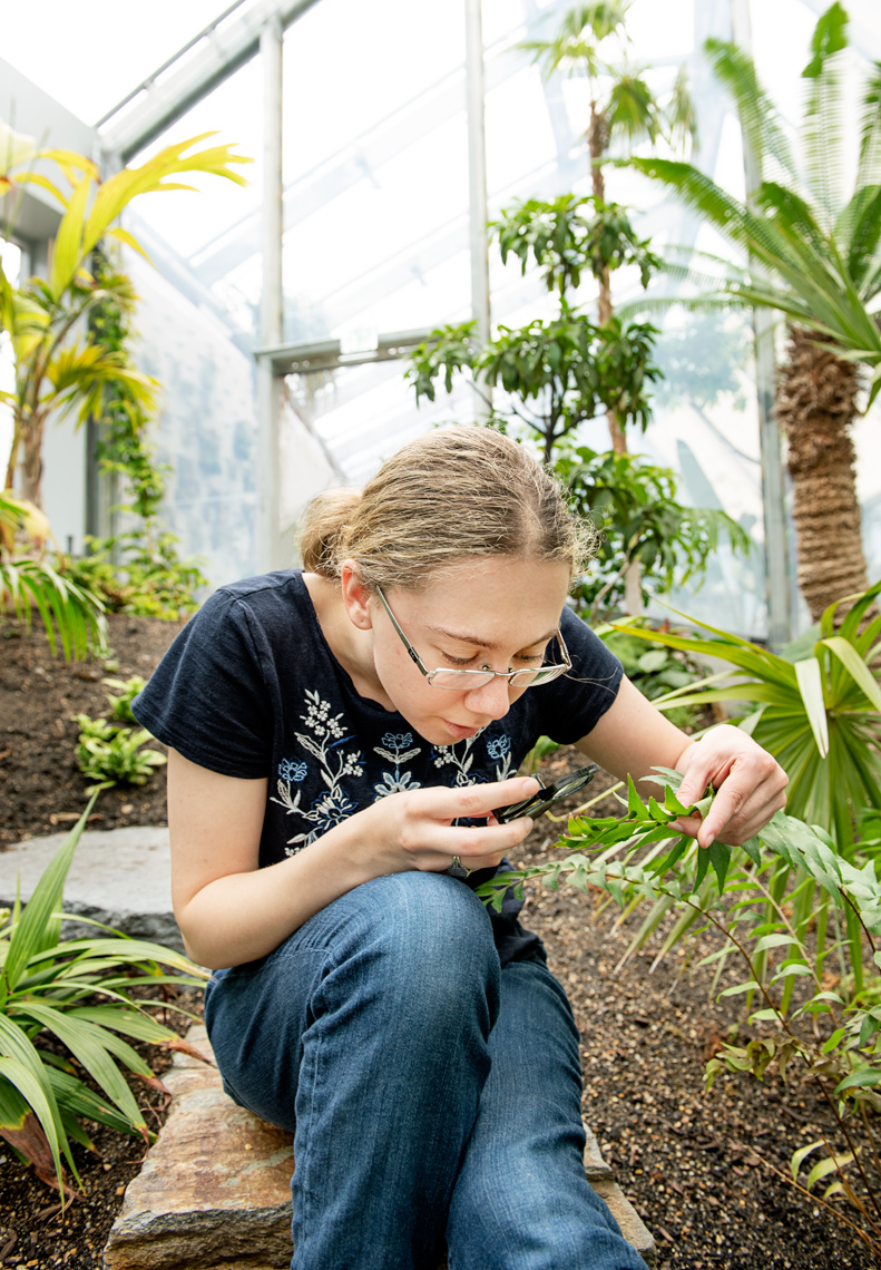 Wellesley student studying the global flora collection in the Wellesley Botanic Gardens