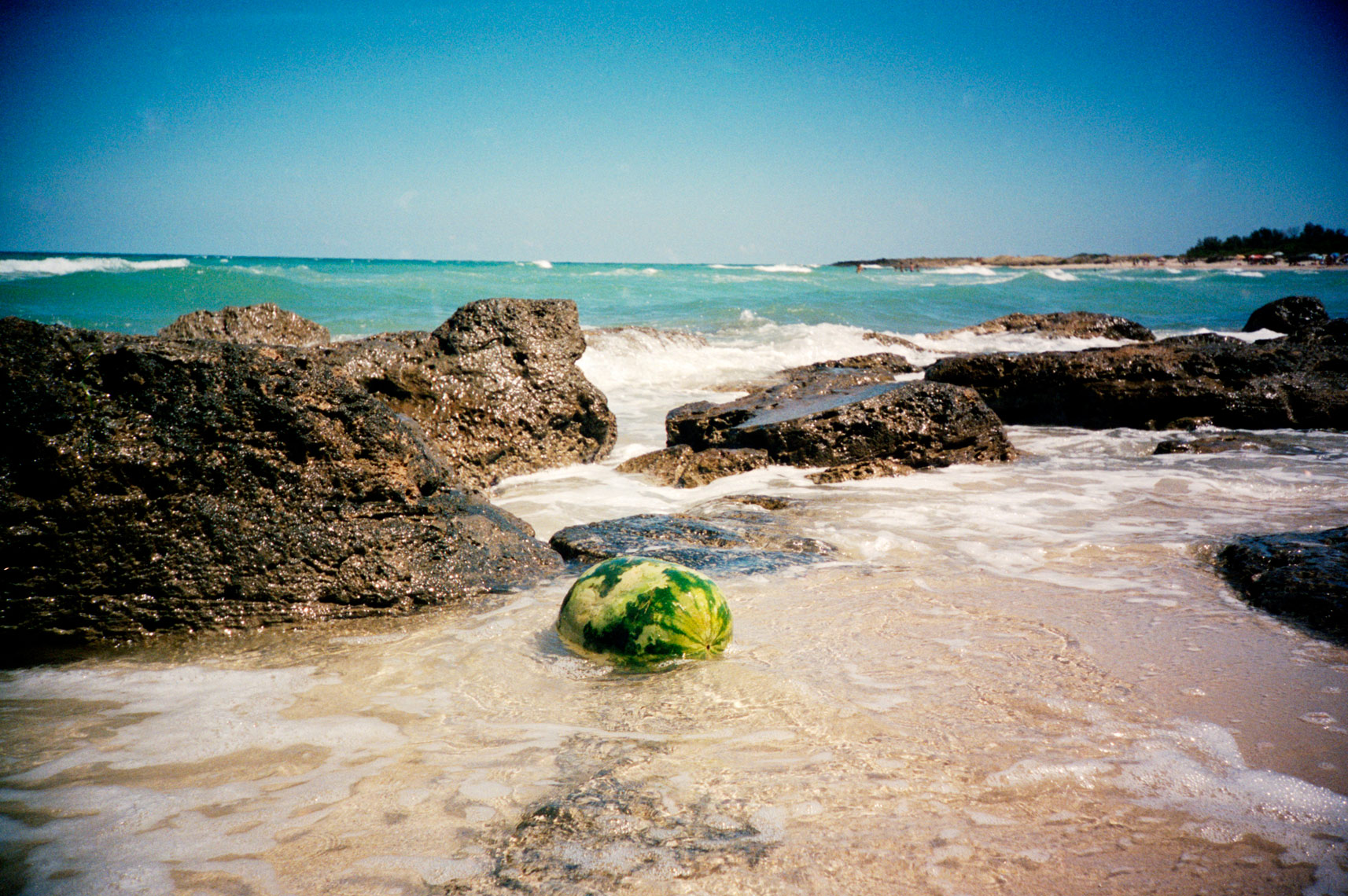 watermelon floating in sea off Adriatic Coast Italy