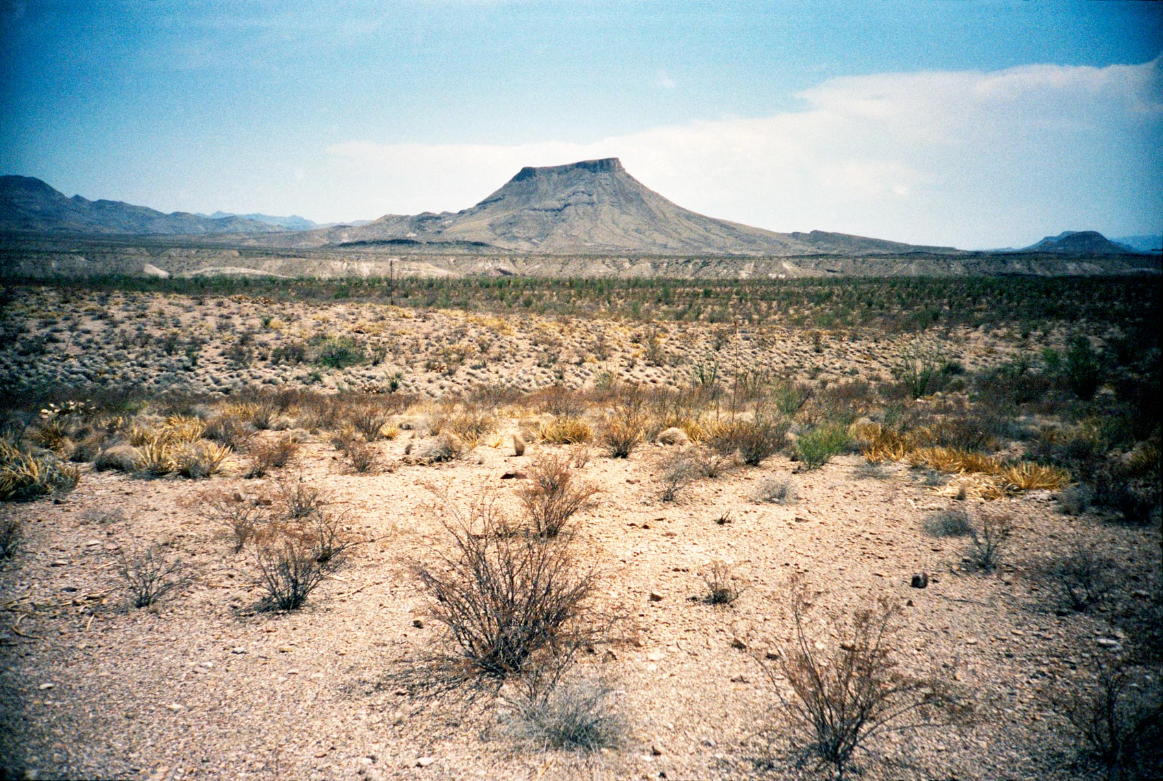 butte in the Chihuahuan Desert  Big Bend Texas