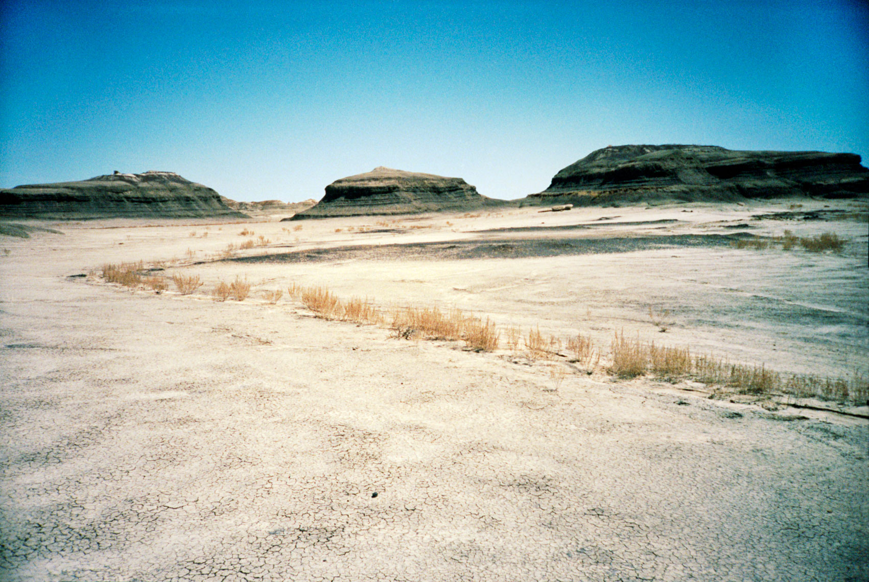 Bisti Badlands, De-Na-Zin Wilderness, New Mexico