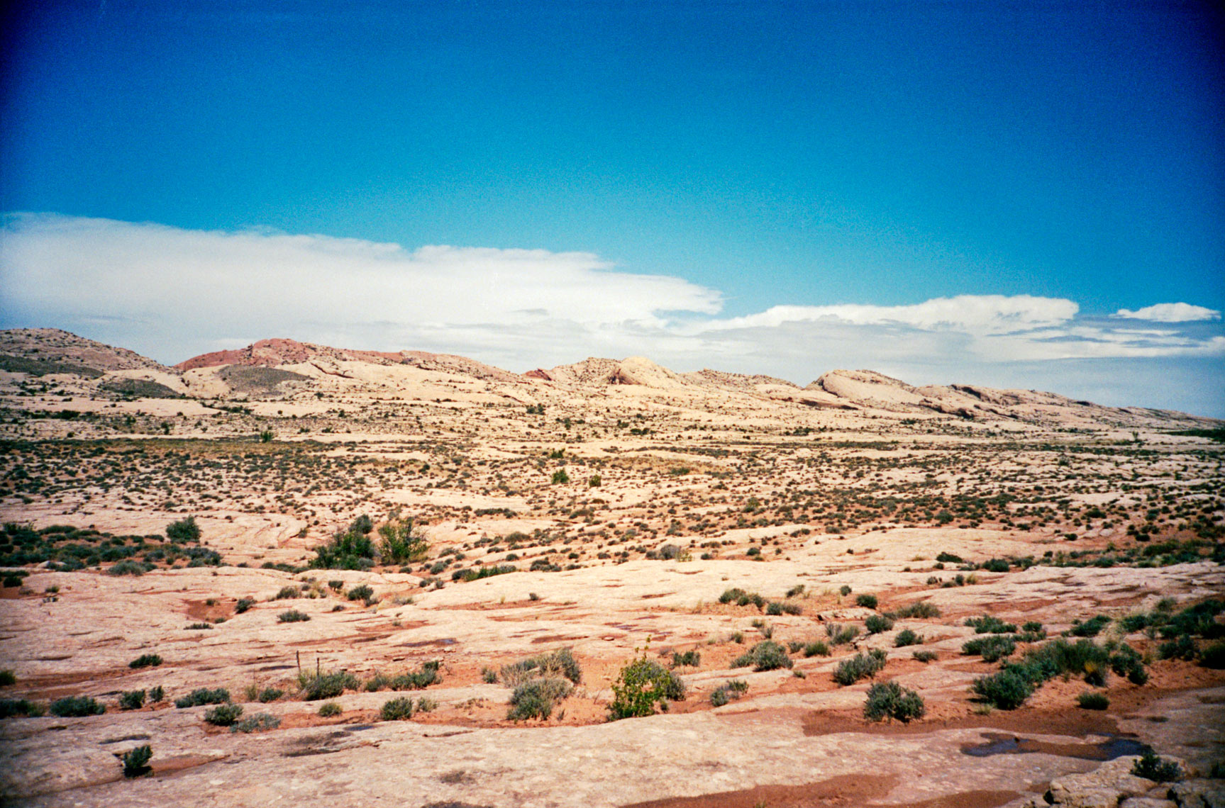 The Comb Ridge near Bluff Utah